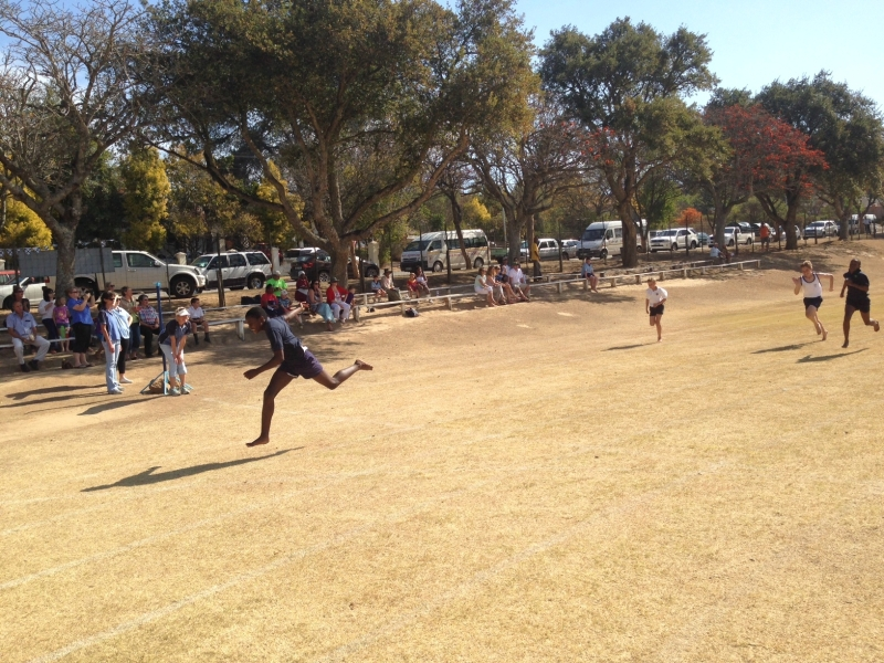 photo_1__lithetha_quadrangular_2013.jpg